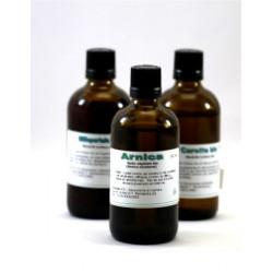 Biologische Arnica  -  Maceratie Olie 100 ml