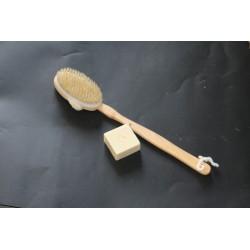 brosse dos avec manche